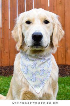 Dog double sided mushroom bandana.