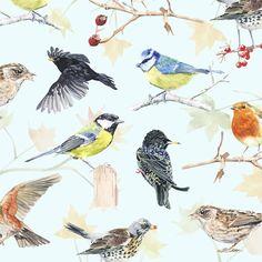 Nature - marcel george illustration