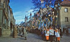50er Jahre:Palmgerten sind heute selten geworden - Bad Kötzting - Mittelbayern