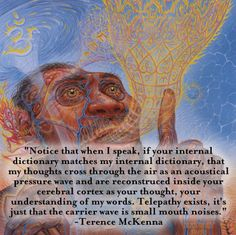 Terence McKenna telepathy art by alex grey Spiritual Enlightenment, Spiritual Awakening, Awakening Quotes, Tao, Psychedelic Quotes, Terence Mckenna, Pantheism, Spiritual Messages, Spiritual Stories