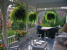 Ferns are perfect for this porch.  Beautiful.