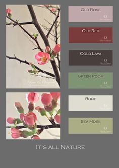 Spring colors mood board from Pure & Original