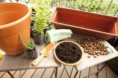 Materiais:<BR>- vaso cerâmico (altura de 30 cm para plantas que precisam de maior profundidade como capim cidreira, manjericão, alecrim, sálvia, pimenta)<BR>- mudas orgânicas<BR>- jardineira plástica (altura de 15 cm para plantas rasteiras como salsinha, coentro, cebolinha, orégano)<BR>- pá<BR>- manta bidim<BR>- terra orgânica<BR>- argila expandida<BR>- pedra<BR>