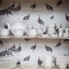 It's not just walls that sometimes need a facelift. Line your bookshelves or kitchen cabinets with wallpaper to transform them into a statement piece of furniture. Here is our Birds of a Feather wallpaper doing just that and we think it looks fab! #wallpaper #guineafowl #drawing #illustration #design #details #decoration #home #inspiration #interiordesign #homedecor #kitchen #interiors #safari #birds #shelving #furniture