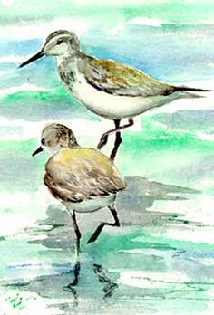 Sandpipers Art For Sale - Buy beach art and more at Donna Burgess Gallery. Original paintings, many sizes available.