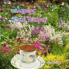 Τετάρτη σήμερα με τις πιο όμορφες καλημέρες(εικόνες) - eikones top Beautiful Pink Roses, French Press, Kitchen Appliances, Diy Kitchen Appliances, Home Appliances, Kitchen Gadgets