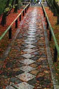 Kouetsu-ji temple 光悦寺 Garden Forum, Garden Images, Japanese Gardens, Elements Of Design, Tea Ceremony, Railroad Tracks, Over The Years, Stepping Stones, Paths
