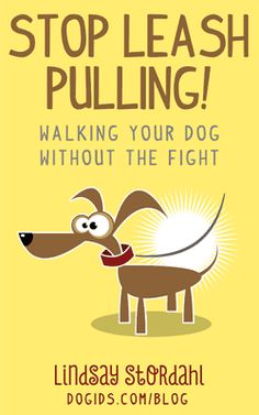 Stop Leash Pulling! Walking Your Dog Without the Fight