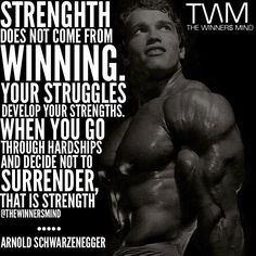 Arnold Schwarzenegger Quotes Simple Arnold Schwarzenegger Quote  If I Listened To The Naysayers . Review