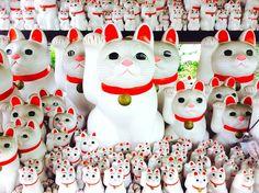 猫好きが集まるお寺。豪徳寺はなぜ「招き猫」発祥の地と言われるのか? - TRiP EDiTOR