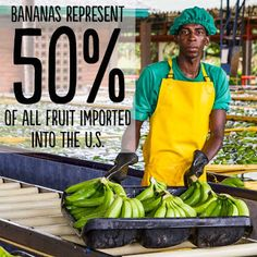 'Pin' if you knew that #bananas are one of the most popular fruits in the world! Imagine the lives we could change if all bananas were #FairTradeCertified. #ImprovingLives