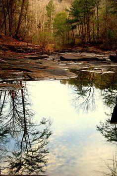 Lake Harris  Tuscaloosa, Alabama