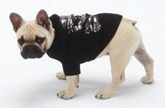 Dog Skull Sweater