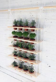 Ý tưởng vườn cây thẳng đứng cho nhà có diện tích hẹp - Kenh14.vn