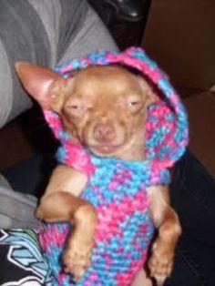 27 Free Crochet Patterns For Plus Size Fashions Link Blast Women S Clothing Http Kimguzman
