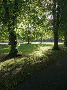 Morning in Herbert Park - 22/09/13