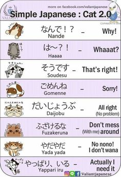 Basic foods in Japanese with Kanji and Hiragana an. Learn Japanese Words, Study Japanese, Japanese Culture, Japanese Cat, Japanese Love, Hiragana, Japanese Quotes, Japanese Phrases, Japanese Memes
