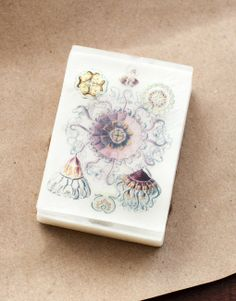 Anthomedusae, leptomedusae, discomedusae, and peromedusae are orders of the Hydrozoa – (jellyfish!) These were drawn by Ernst Haeckel in the early 1900s. This handmade organic glycerin soap smells lightly of fresh linen, made from aromatics grown locally at Aurora Naturals. The soap design features two layers of imagery that produce a must-see 3D effect! #haeckel #jellyfish #soap