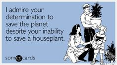 I admire your determination to save the planet despite your inability to save a houseplant.