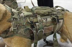 Tactical versions come with MOLLE strips, so Fido can look as tacti-cool as you. Plus, you can attach and detach utility pouches and other gear and swap them between your bag and his. Tactical Survival, Survival Gear, Tactical Gear, Survival Prepping, Survival Skills, Wilderness Survival, Oakley Tactical, Tactical Dog Harness, Tactical Training