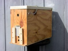 Get your swarm traps ready for Spring! (why does one want to trap a swarm?)