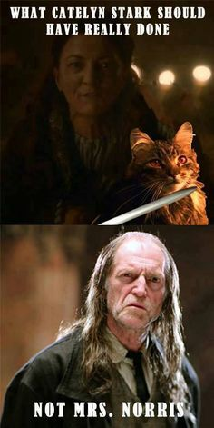 Game of Thrones/Harry Potter funny memes Humor Mexicano, Winter Is Here, Winter Is Coming, Summer Winter, Got Memes, Funny Memes, Funny Gags, Catelyn Stark, Mejores Series Tv