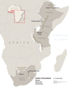 Early Hominid Fossil Sites | Where Is the Birthplace of Humankind? South Africa and East Africa Both Lay Claims