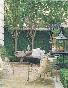 Three trees, espalier-like, provide good privacy. (Orig. Pin: I need a good patio like I need my desk back.)