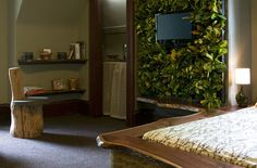 Living wall surrounding a TV!