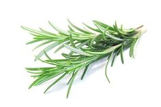 Rosemary has had the reputation for miracles for thousands of years.