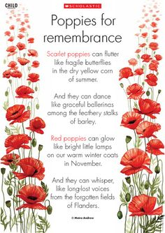 Poppies For Remembrance. At the going down of the sun and in the morning, we will remember them. Lest we forget!