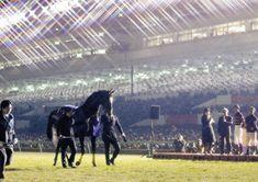 【有馬記念】キタサンブラック、有終V!武豊最後までブラックの競馬貫いた!