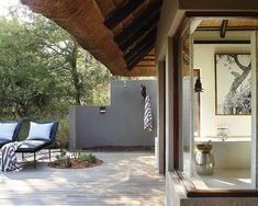 Londolozi Tree Camp offers you luxury safari lodge accommodation in the Sabi Sands Game Reserve near Kruger National Park. Sand Game, Tree Camping, Plunge Pool, Game Reserve, Lodges, Safari, Places To Go, Patio, Luxury