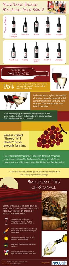How long should you store #wine for? Discover more in this #infographic: http://finedininglovers.com/blog/food-drinks/storing-wine/