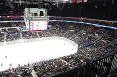 Charlotte Checkers Game Day