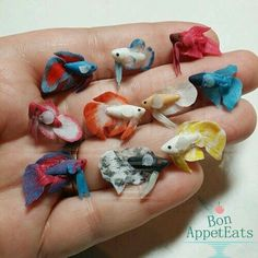 DeviantArt: More Collections Like Miniature Betta Fish WIP by Bon-AppetEats Polymer Clay Kunst, Cute Polymer Clay, Polymer Clay Animals, Cute Clay, Polymer Clay Miniatures, Fimo Clay, Polymer Clay Projects, Polymer Clay Charms, Polymer Clay Creations