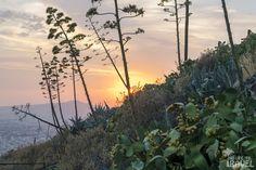 Wzgóze Likavitos