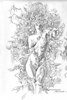 POISON IVY, by Alex Ross.