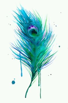 Peacock Feather watercolor
