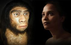 New study leaves little room for doubt – Neanderthals and humans interbred. New developments in techniques for genome analysis offer hope in finally unravelling the complex picture of human origins.