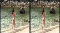泊海水浴場-1 3D