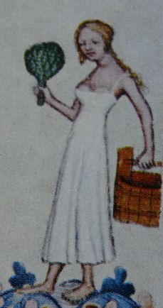 1390-1400 Bible Venceslas IV - république tchèque (Bathhouse Babes dress)