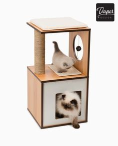 The Walnut Vesper Box Small is a compact piece of cat furniture with a cozy sleeping cave, lounging spots, a ball toy, and a scratching pillar. Shop now! Compact Furniture, Modern Cat Furniture, Vesper Cat Furniture, Cat Towers, White Laminate, Scratching Post, Small Boxes, Body Shapes, Memory Foam