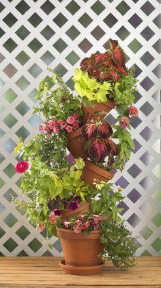 Flip Flop Flowerpot garden