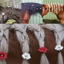 The most important role of equestrian clothing is for security Although horses can be trained they can be unforeseeable when provoked. Riders are susceptible while riding and handling horses, espec… Horse Mane Braids, Horse Hair Braiding, Pretty Horses, Horse Love, Beautiful Horses, Horse Photos, Horse Pictures, Horse Tail, Horse Treats