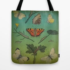 Insect Study Tote