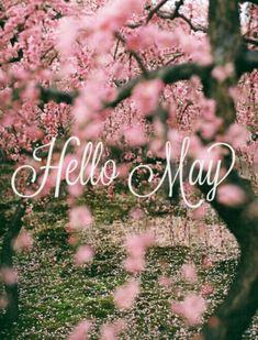 Good morning ladies happy May!!!