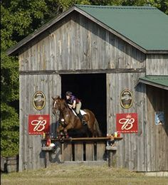 Out of the barn (perhaps not the best trick to teach your horse)