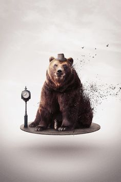 Stay creative with the new Inspirational Art Series Nature Illustration, Graphic Design Illustration, Photomontage, Bear Art, Art Series, Photoshop, Animals Images, Photo Manipulation, Illustrations Posters