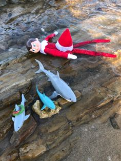 To everyone who wants those annoying Christmas songs out of their heads, you're welcome! The Elf, Elf On The Shelf, Shark, December, Songs, Christmas Ornaments, Holiday Decor, Sharks, Christmas Ornament